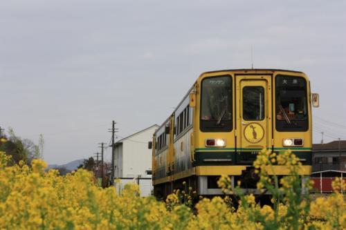 いすみ鉄道 国吉駅 いすみ207&205