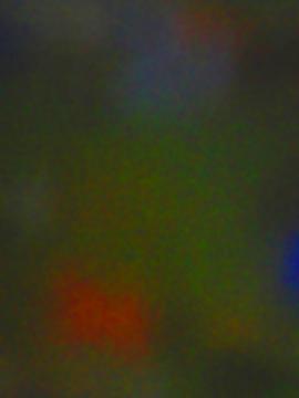 09111801.jpg
