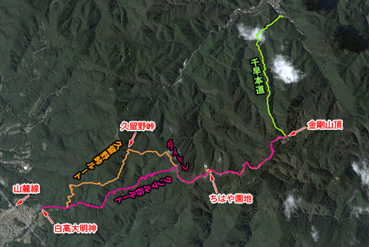20100126.jpg