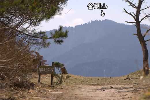 20100327-14.jpg