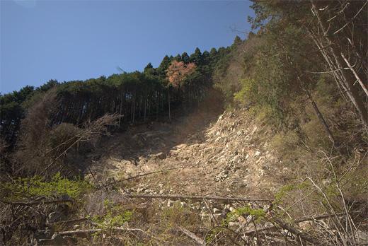 20100425-3.jpg
