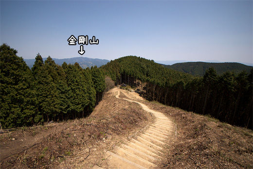 20100502-8.jpg
