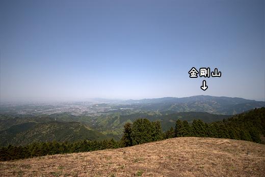 20100502-9.jpg