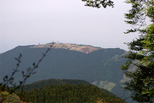 20100508-7.jpg