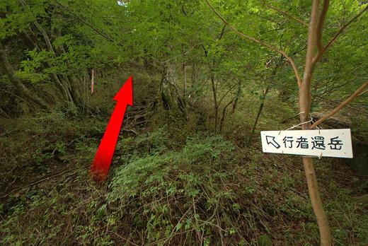 201007010-3.jpg