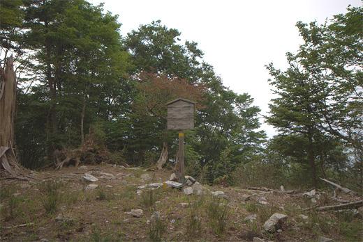 20100821-11.jpg