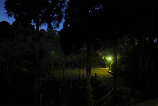 20101113-3.jpg