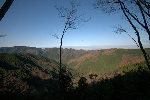 20101205-12.jpg