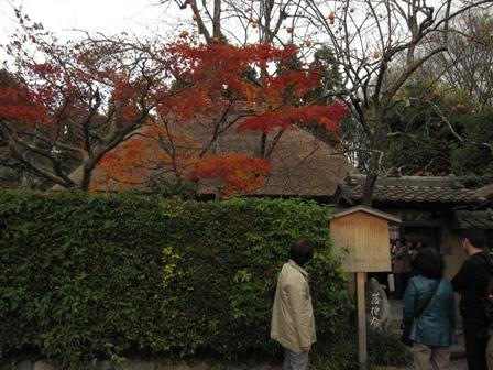 arashiyama (6)