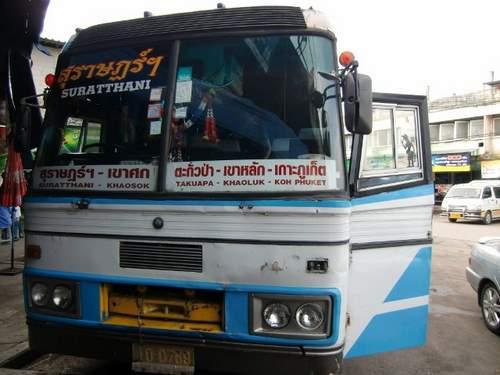 M ローカルバス