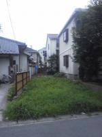 NEC_0351.jpg