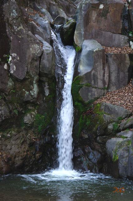 100425旭の滝08