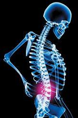 15_back_pain_tips_4441_13.jpg
