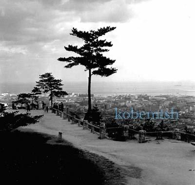 諏訪山1L