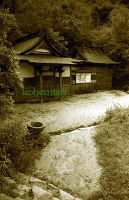 yositakaL.jpg