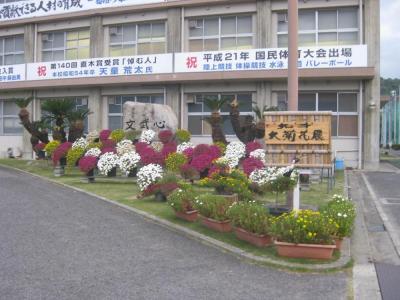 1高校の菊花展