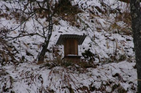 田舎の雪5