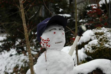 田舎の雪4