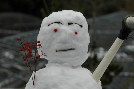 田舎の雪3