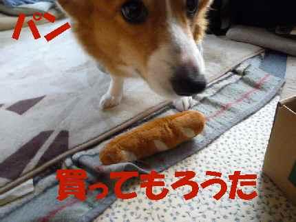 ユキのパン