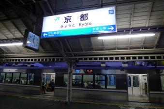 P1100716.jpg