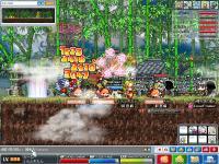2_20101127045724.jpg