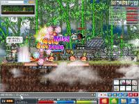 3_20101127045724.jpg