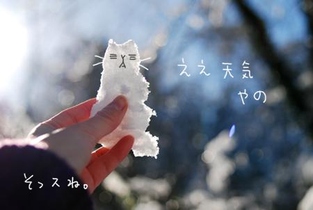 雪猫0202