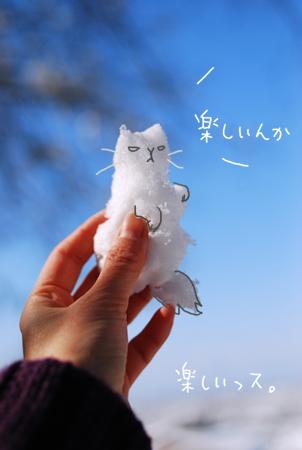 雪猫0302