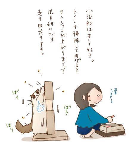 kire_m.jpg