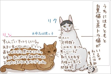 kyoumi01_20110130232044.jpg