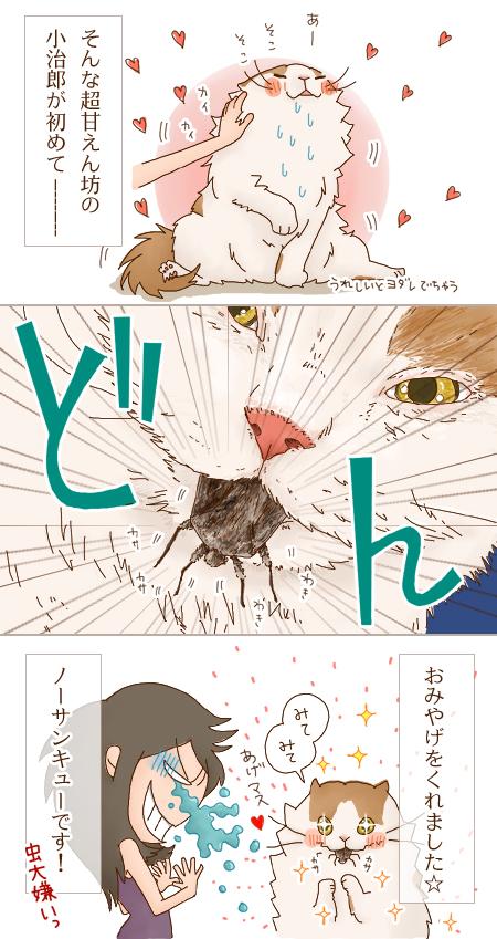 omiyage02_20101015130952.jpg