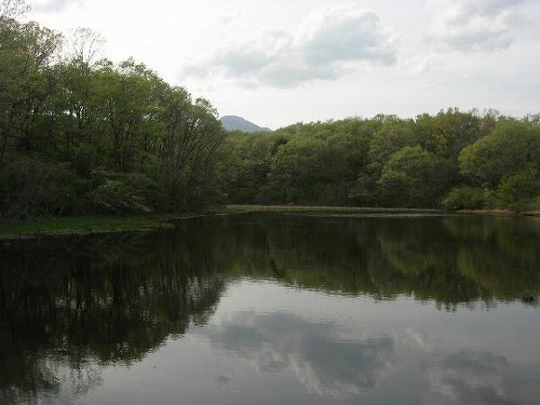 2011-5-17-1ss.jpg