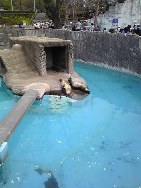 東山動物園2010