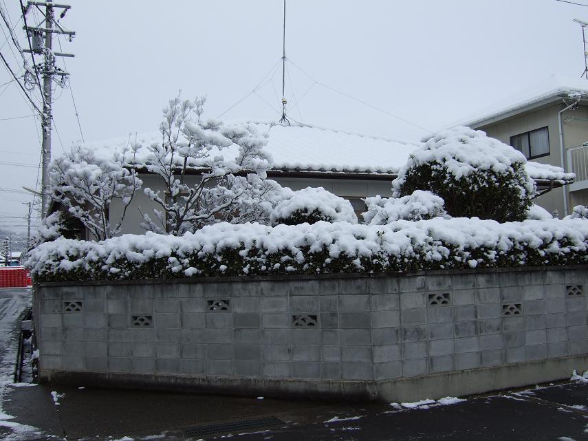 冬将軍 004