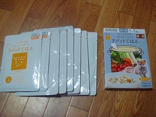 komugi 3213