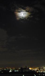 中秋の名月(^ω^)