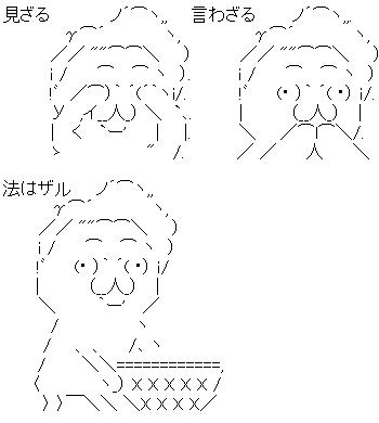 鳩山 法はザル