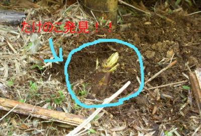 DSCN6744-1_convert_20100421163653.jpg