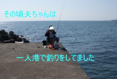 DSCN6776-1_convert_20100421163849.jpg