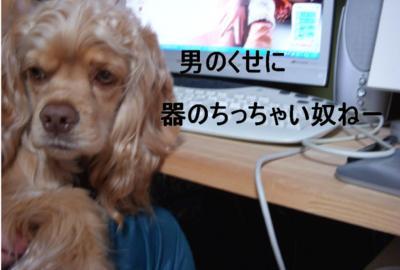tikumarori_convert_20100131123255.jpg
