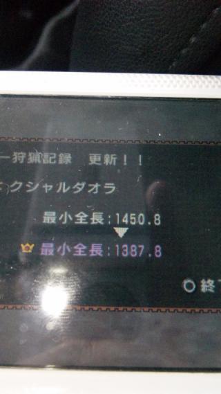 100213_104209_convert_20100214005147.jpg