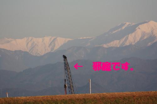 bu-40390001.jpg
