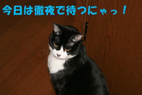 001_convert_20091224202600.jpg