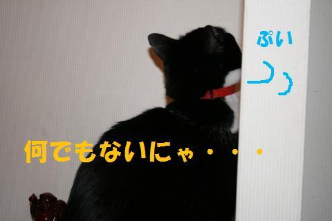003_convert_20091218204636.jpg
