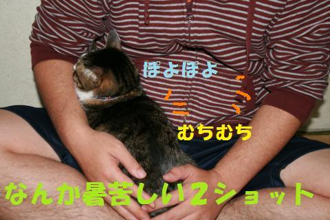 005_convert_20091129225212.jpg