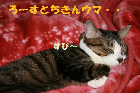 006_convert_20091221234559.jpg