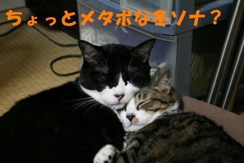 008_convert_20091111222658.jpg