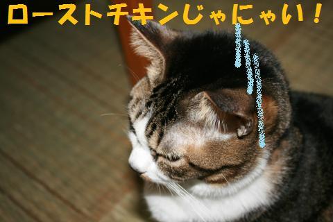 015_convert_20091224203033.jpg