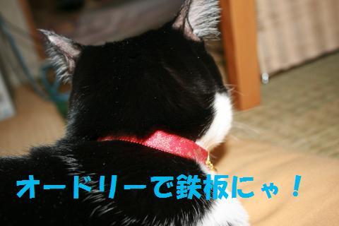 025_convert_20091217222233.jpg